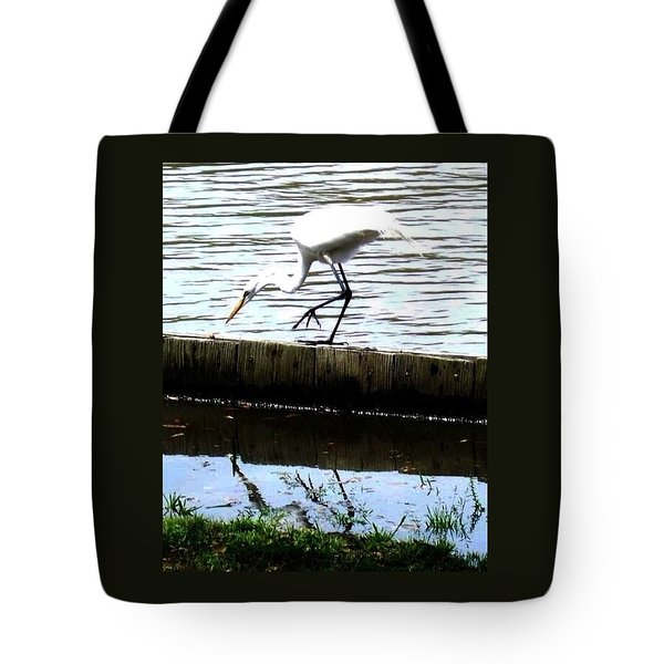 Louisiana Wildlife Tote Bag by Robin Lewis