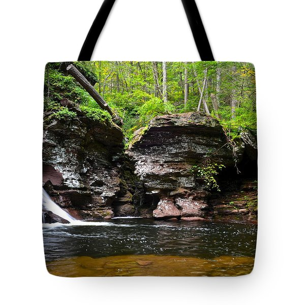 Lower Adams Falls Tote Bag by Frozen in Time Fine Art Photography