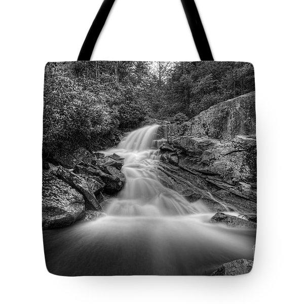 Lower Falls On Big Run River  Tote Bag by Dan Friend