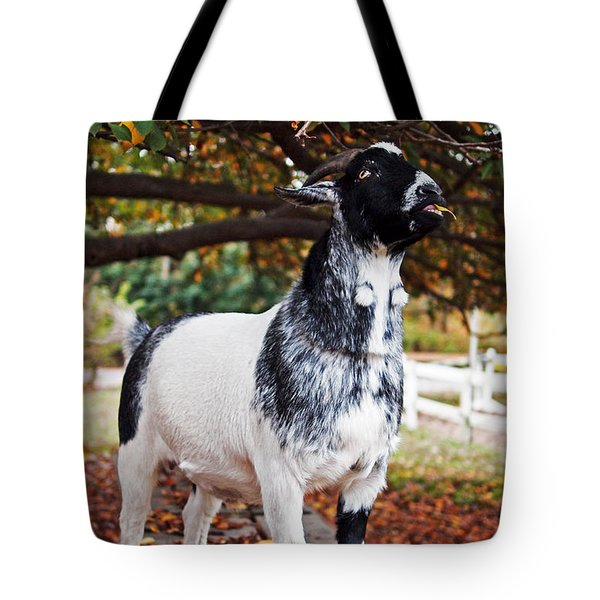 Lunch With Goat Tote Bag by Rona Black