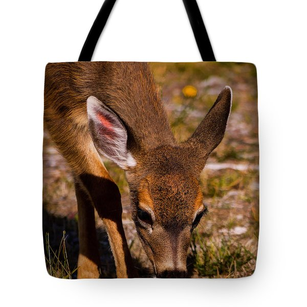 Lunchtime In The Forest Tote Bag by Jordan Blackstone