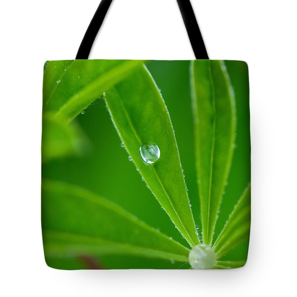 Lupine Dreams Tote Bag by Lisa Knechtel