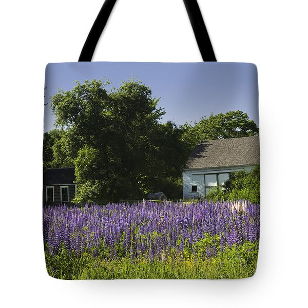 Lupine Flowers Near Round Pond Maine Tote Bag by Keith Webber Jr