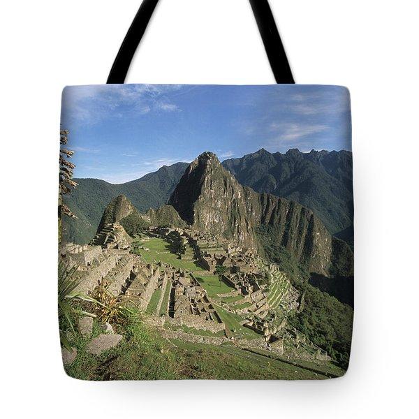 Machu Picchu and bromeliad Tote Bag by James Brunker