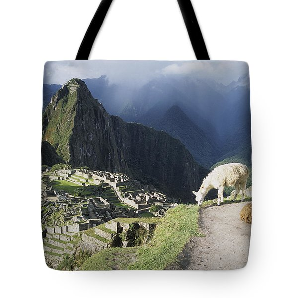 Machu Picchu And Llamas Tote Bag by James Brunker