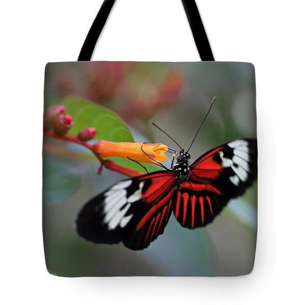 Madiera Butterfly Tote Bag by Juergen Roth