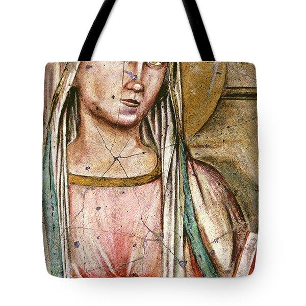 Madonna Del Parto - Study No. 1 Tote Bag by Steve Bogdanoff