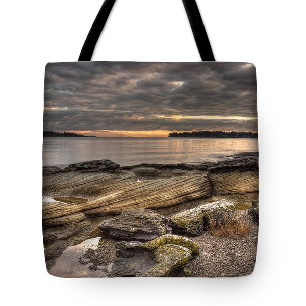 Madrona Point Tote Bag by Randy Hall