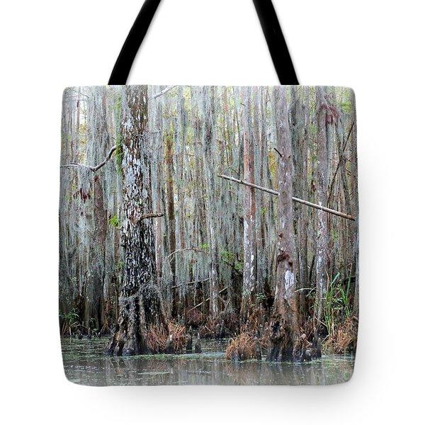 Magical Bayou Tote Bag by Carol Groenen