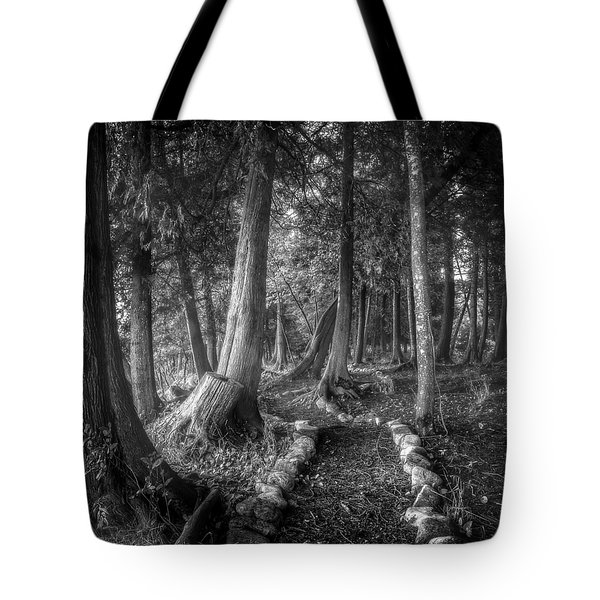 Magical Forest 2 Tote Bag by Scott Norris