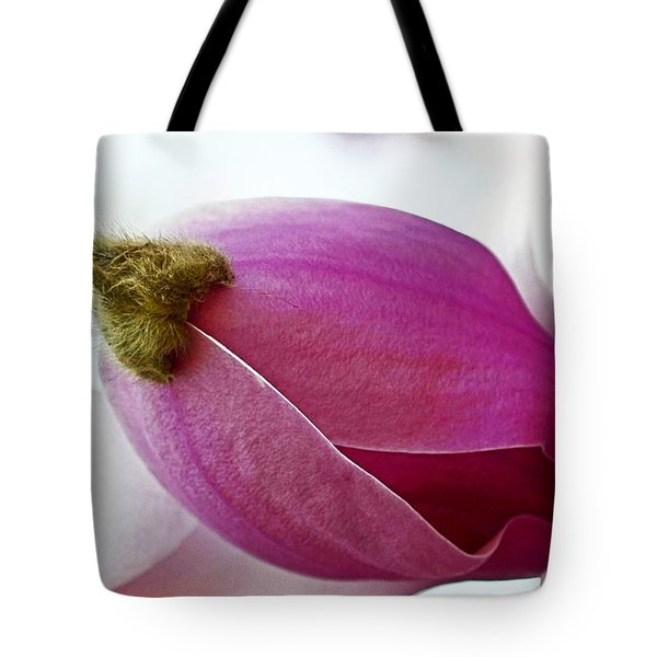Magnolia Blossom with Cap Tote Bag by Lisa  Phillips