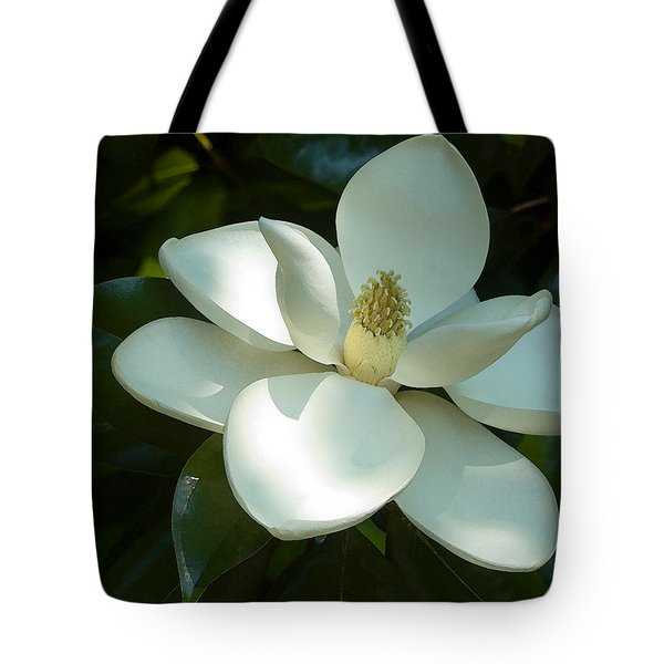 Magnolia Tote Bag by Frank Tozier