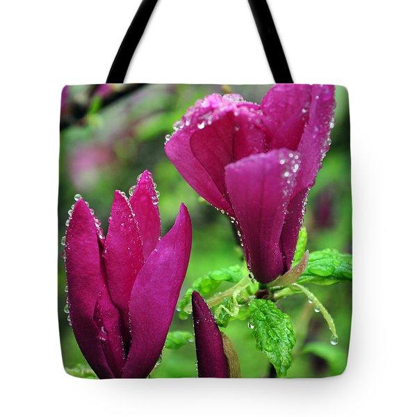 Magnolia Tote Bag by Randi Grace Nilsberg