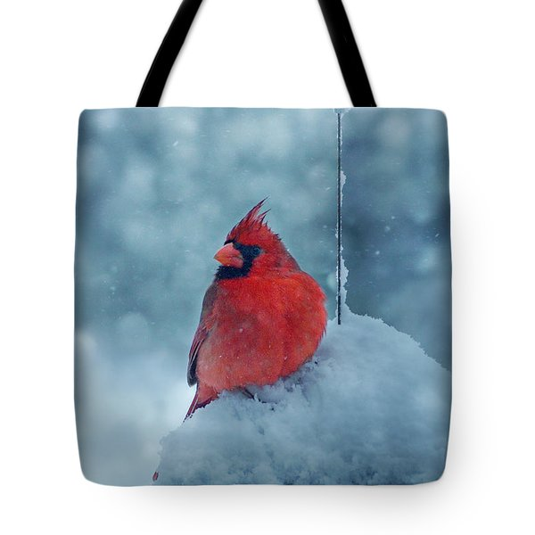 Male Cardinal In The Snow Tote Bag by Sandy Keeton