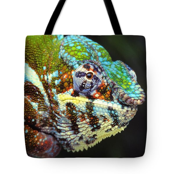 Male Panther Chameleon Furcifer Tote Bag by Thomas Kitchin & Victoria Hurst