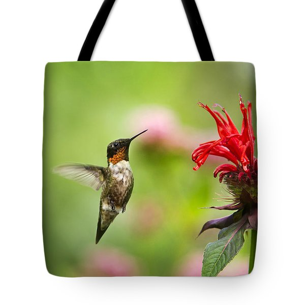 Male Ruby-throated Hummingbird Hovering Near Flowers Tote Bag by Christina Rollo