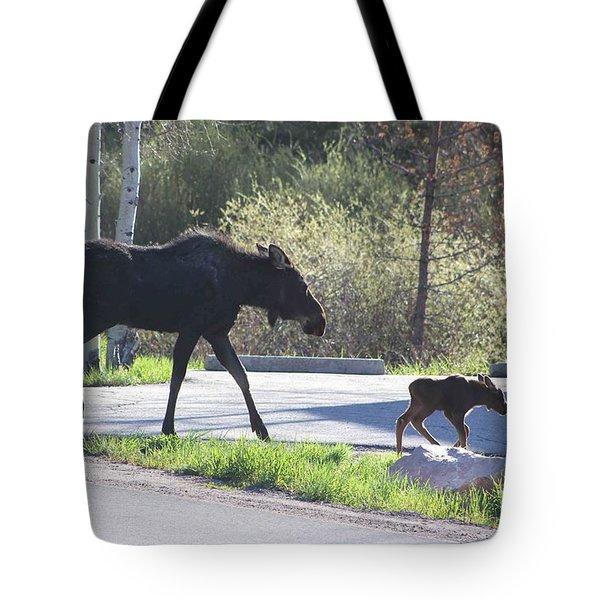 Mama And Baby Moose Tote Bag by Fiona Kennard
