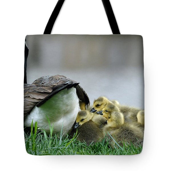 Mama And Goslings Tote Bag by Lisa Phillips