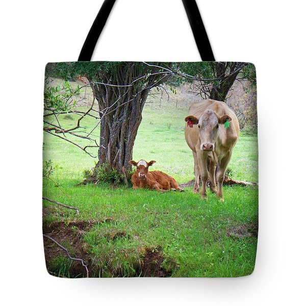 Mama Cow And Calf Tote Bag by Mary Lee Dereske