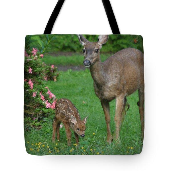 Mama Deer And Baby Bambi Tote Bag by Kym Backland