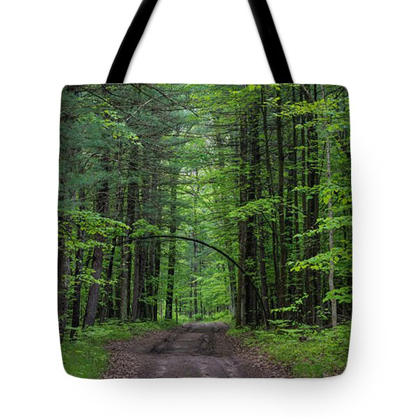 Manistee National Forest Michigan Tote Bag by Steve Gadomski