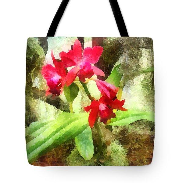 Maroon Cattleya Orchids Tote Bag by Susan Savad