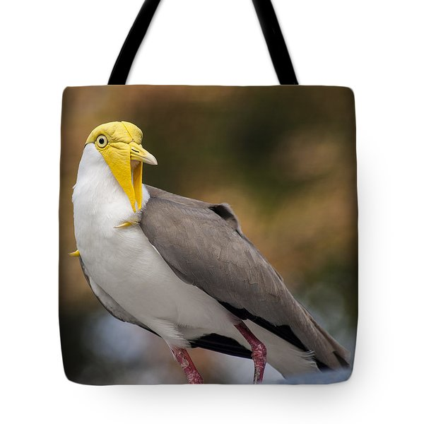 Masked Lapwing Tote Bag by Carolyn Marshall