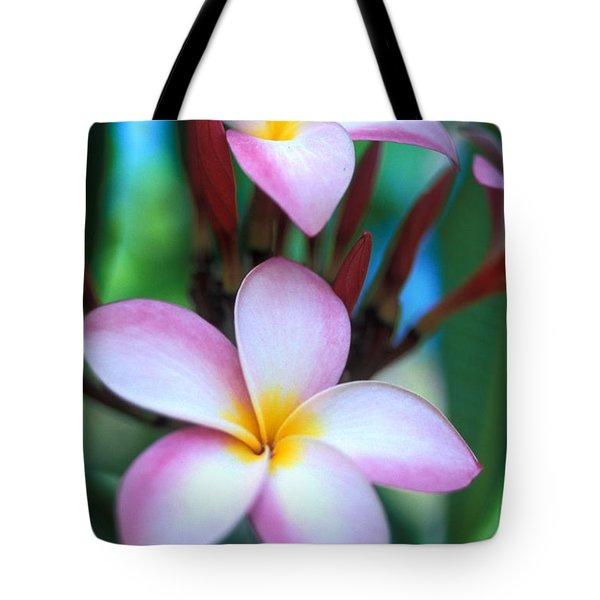 Maui Plumeria Tote Bag by Kathy Yates