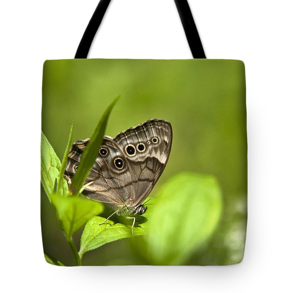 Meadow Butterfly Tote Bag by Christina Rollo