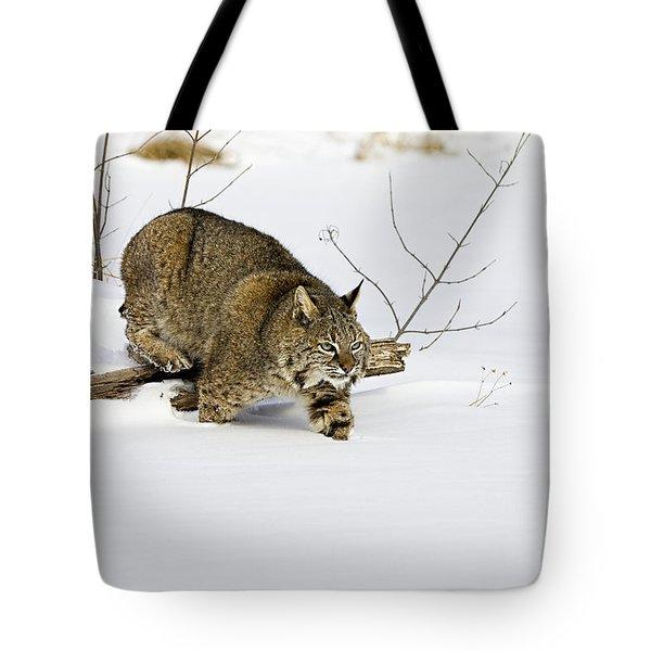Meander Tote Bag by Jack Milchanowski