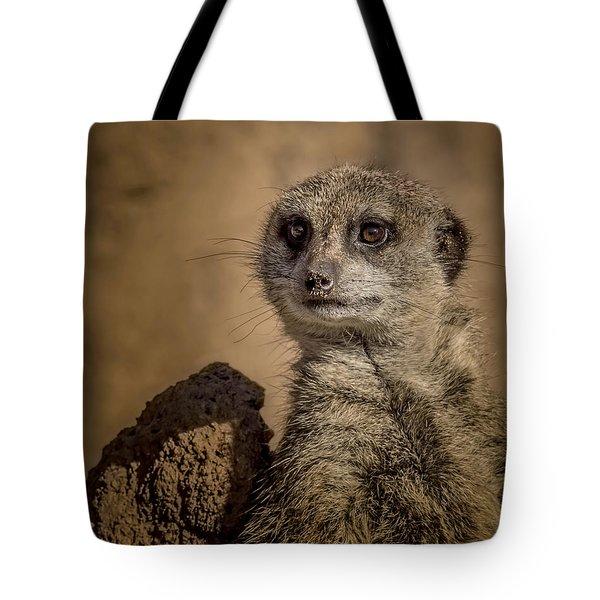 Meerkat Tote Bag by Ernie Echols