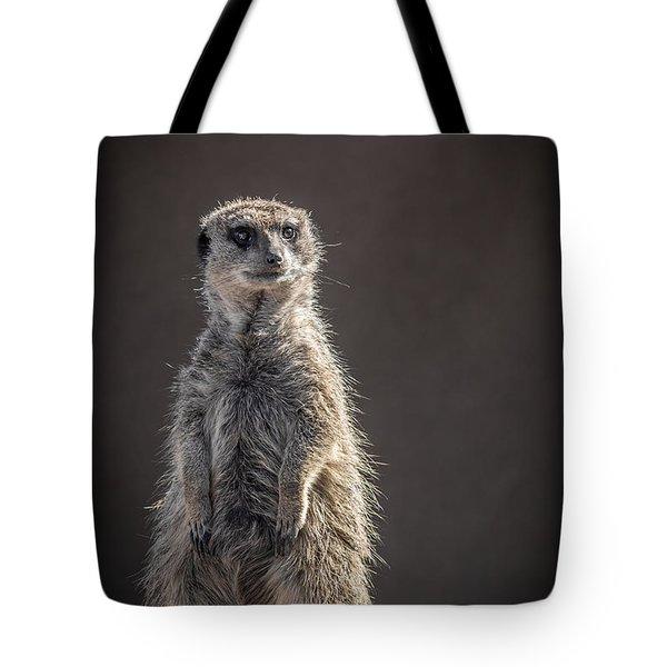Meerkat Sentinel Tote Bag by Ernie Echols