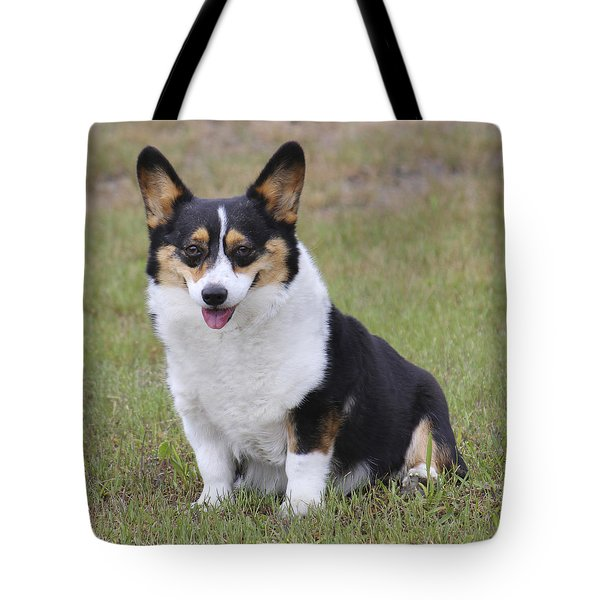 Meet Trixie Tote Bag by Mike McGlothlen