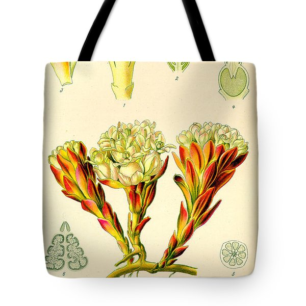 Melera Tote Bag by Nomad Art And  Design