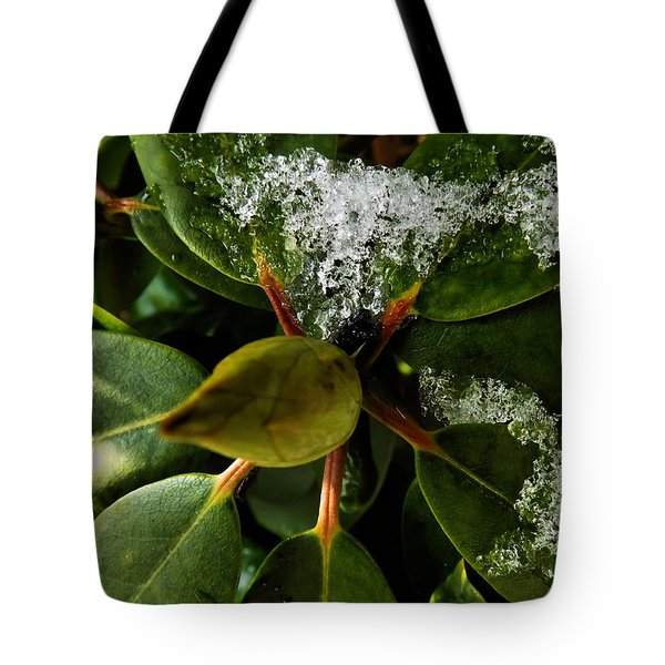 Melting Crystals Tote Bag by Robyn King