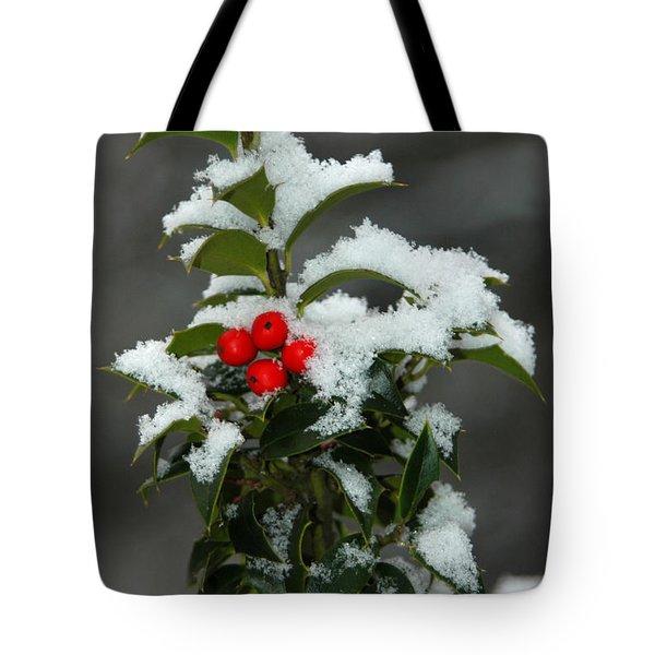 Merry Christmas Tote Bag by Raymond Salani III