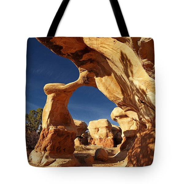 Metate Arch Tote Bag by Leland D Howard