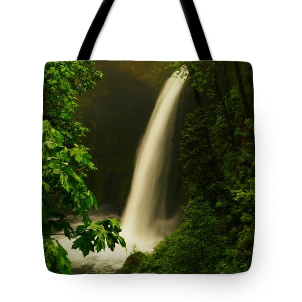 Metlako Falls Tote Bag by Jeff  Swan