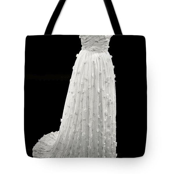 Michelle Obama's Inaugural Gown Tote Bag by Cora Wandel