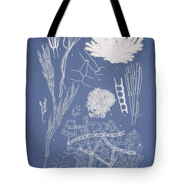 Microdyctyon And Cladophora Tote Bag by Aged Pixel