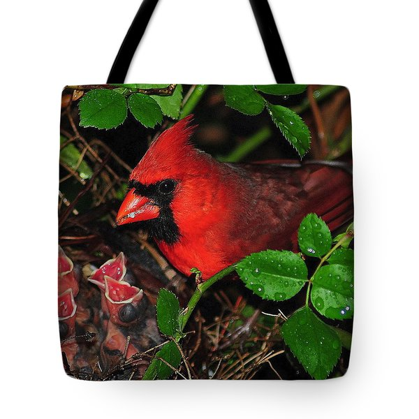 Midnight Snack ll Tote Bag by Frozen in Time Fine Art Photography