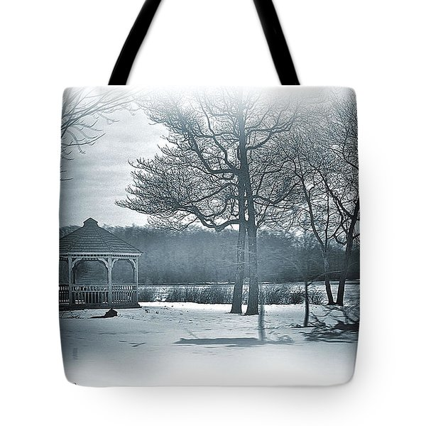 Mill Pond In Winter Tote Bag by Mikki Cucuzzo
