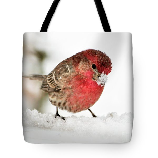 Mining For Food Tote Bag by Betty LaRue