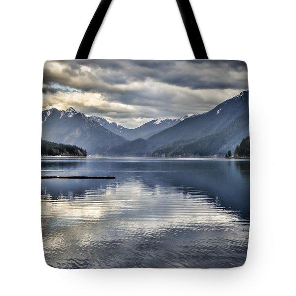 Mirror Image Tote Bag by Heather Applegate
