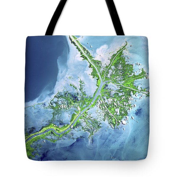 Mississippi River Delta Tote Bag by Adam Romanowicz