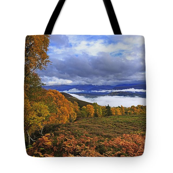 Misty day in the Cairngorms II Tote Bag by Louise Heusinkveld
