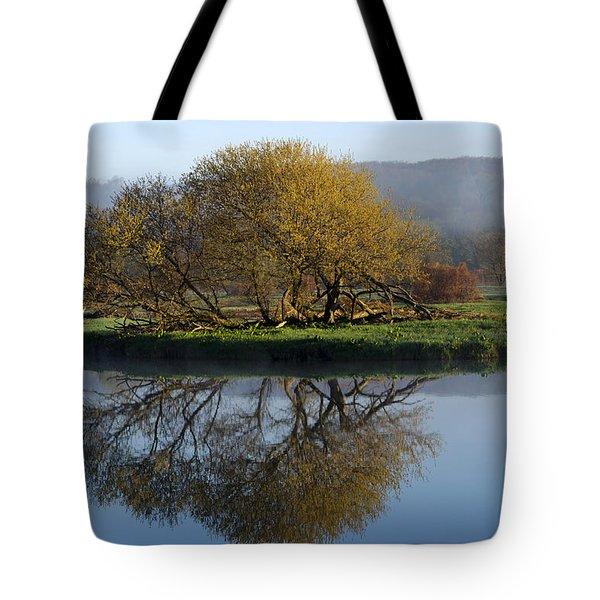 Misty Golden Sunrise Reflection Tote Bag by Christina Rollo