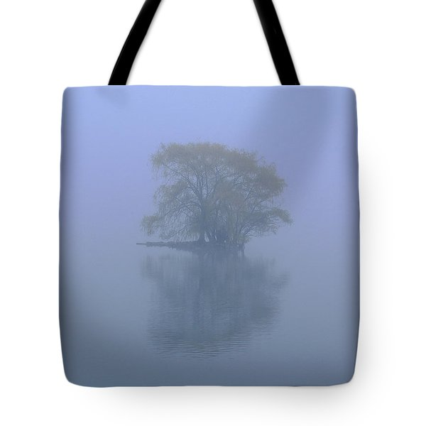 Misty Morning At Jamaica Pond Tote Bag by Juergen Roth