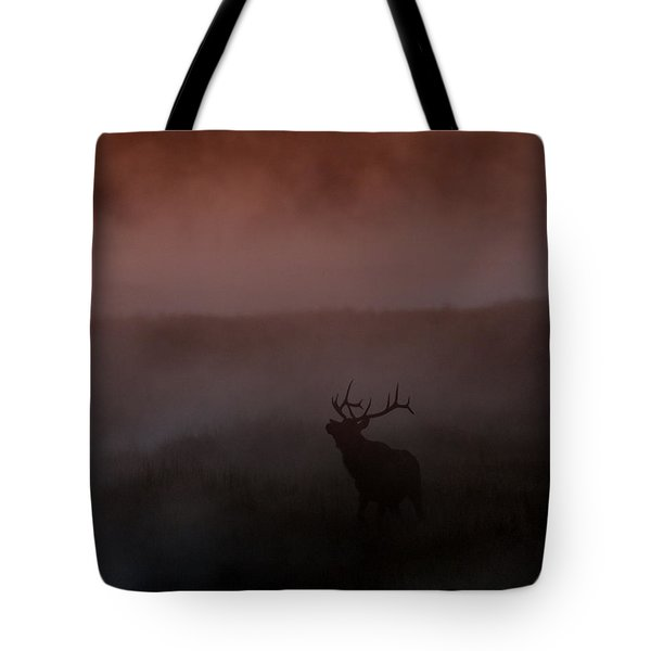 Misty Morning Elk Tote Bag by Gary Langley