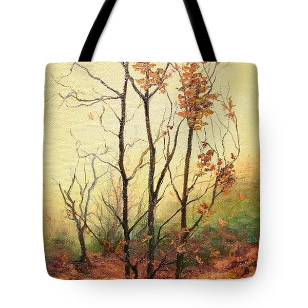 Misty Morning Tote Bag by Sorin Apostolescu